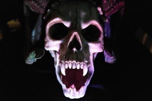 skull-535745_1920